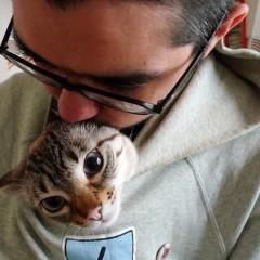 Sr. Galleta & Peanut Butter Cat